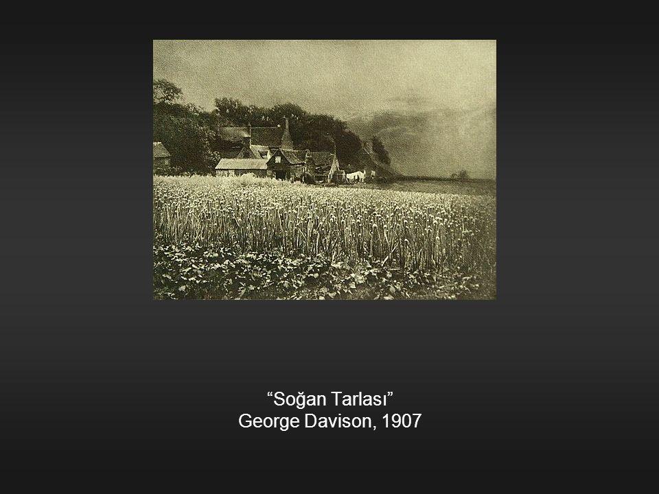 """""""Soğan Tarlası"""" George Davison, 1907"""