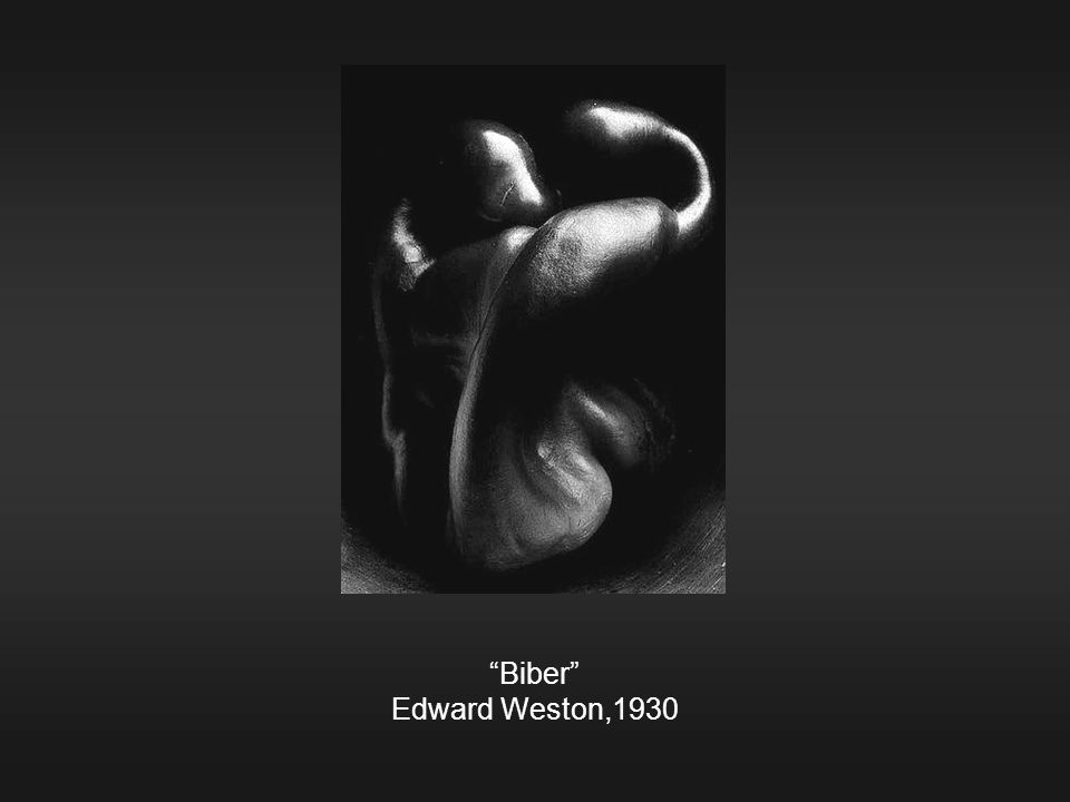 """Biber"" Edward Weston,1930"
