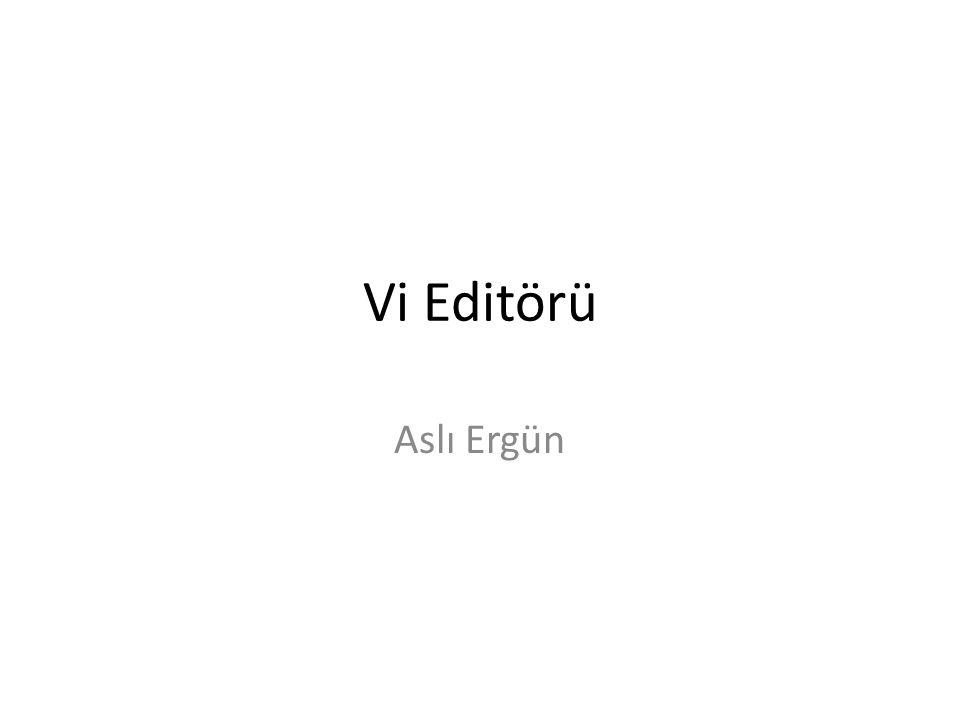 Vi Editörü Aslı Ergün