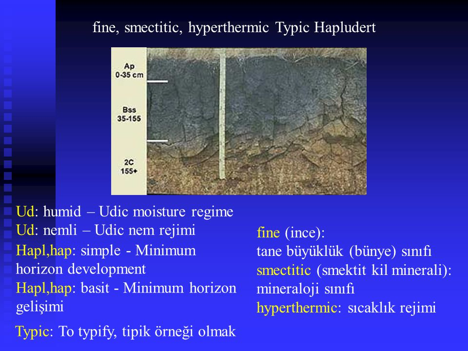 fine, smectitic, hyperthermic Typic Hapludert Ud: humid – Udic moisture regime Ud: nemli – Udic nem rejimi Hapl,hap: simple - Minimum horizon developm
