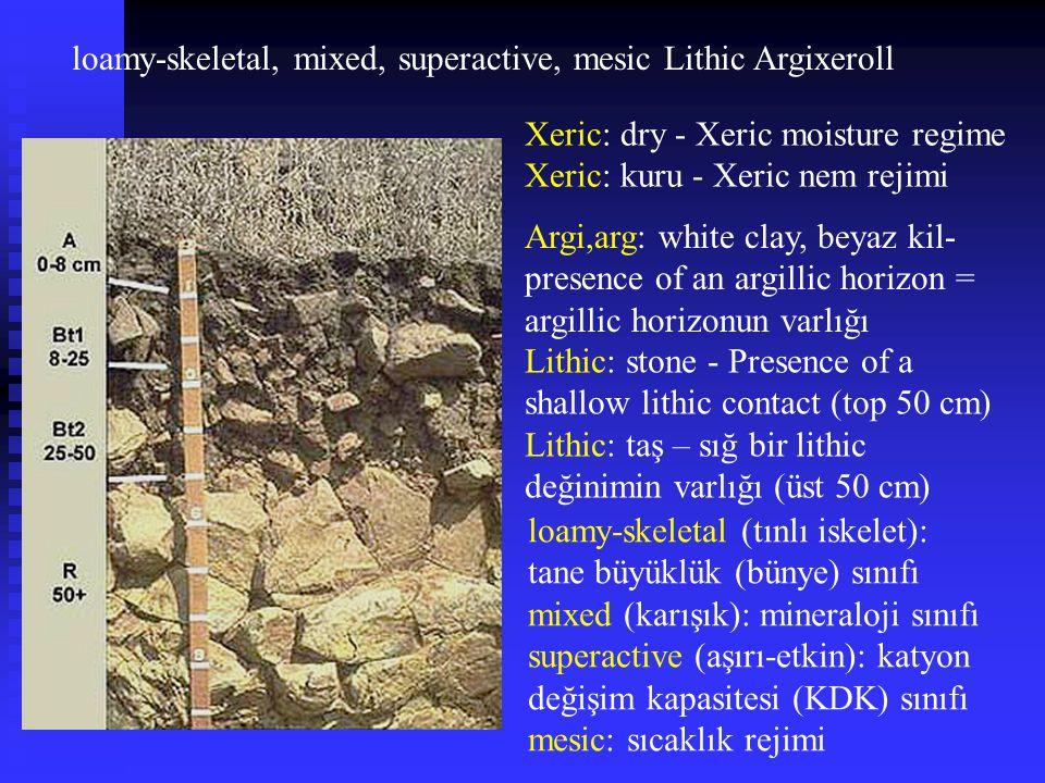 loamy-skeletal, mixed, superactive, mesic Lithic Argixeroll Xeric: dry - Xeric moisture regime Xeric: kuru - Xeric nem rejimi Argi,arg: white clay, be