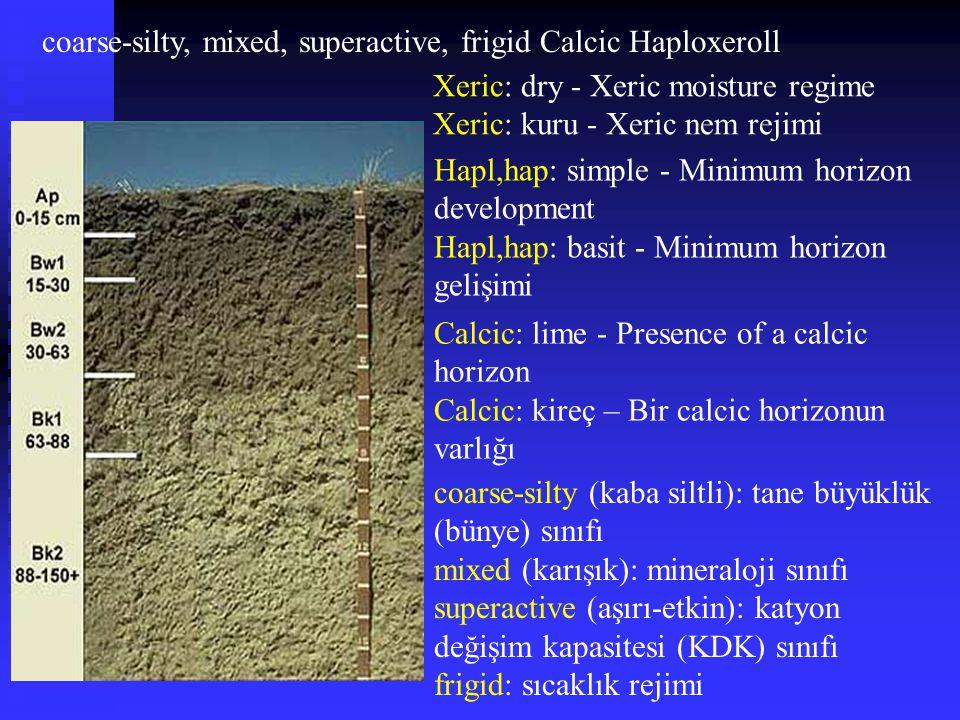 coarse-silty, mixed, superactive, frigid Calcic Haploxeroll Hapl,hap: simple - Minimum horizon development Hapl,hap: basit - Minimum horizon gelişimi