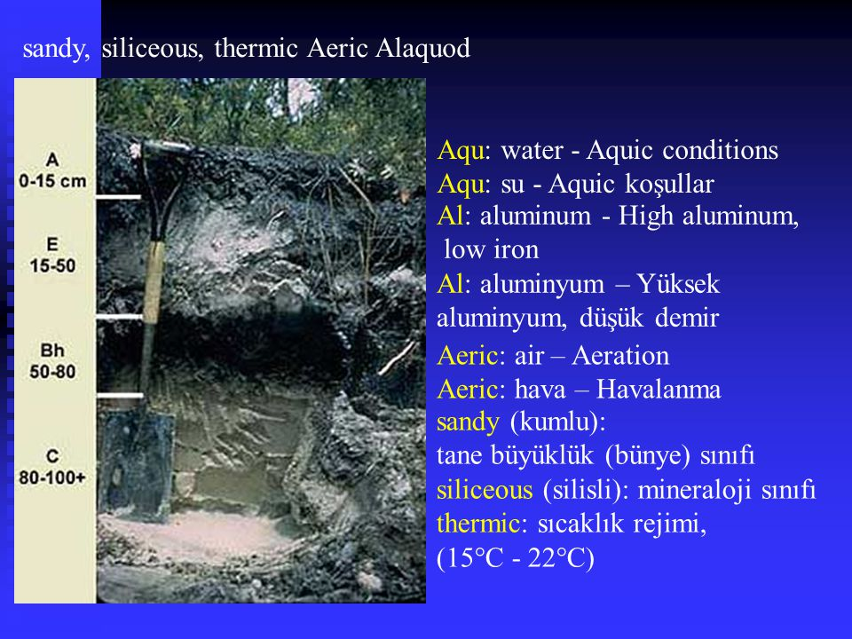 sandy, siliceous, thermic Aeric Alaquod Al: aluminum - High aluminum, low iron Al: aluminyum – Yüksek aluminyum, düşük demir Aeric: air – Aeration Aer