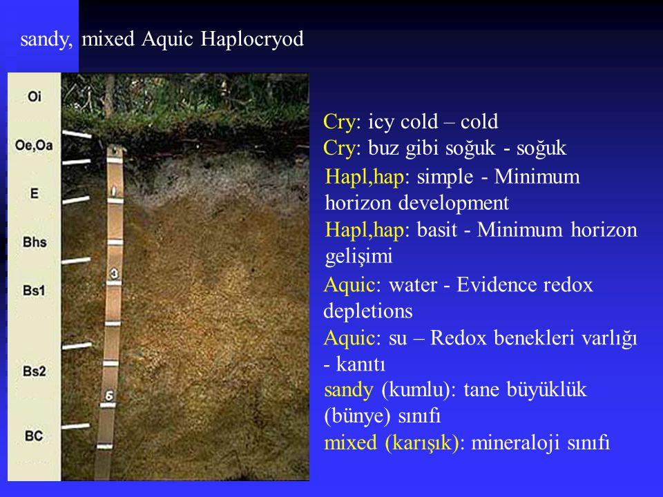 sandy, mixed Aquic Haplocryod Cry: icy cold – cold Cry: buz gibi soğuk - soğuk Hapl,hap: simple - Minimum horizon development Hapl,hap: basit - Minimu