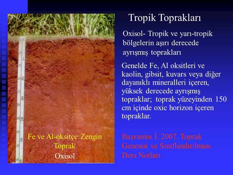 Tropik Toprakları Oxisol Fe ve Al-oksitçe Zengin Toprak Oxisol- Tropik ve yarı-tropik bölgelerin aşırı derecede ayrışmış toprakları Genelde Fe, Al oks