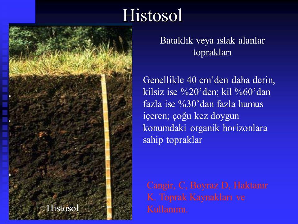 Bataklık veya ıslak alanlar toprakları Histosol Genellikle 40 cm'den daha derin, kilsiz ise %20'den; kil %60'dan fazla ise %30'dan fazla humus içeren;