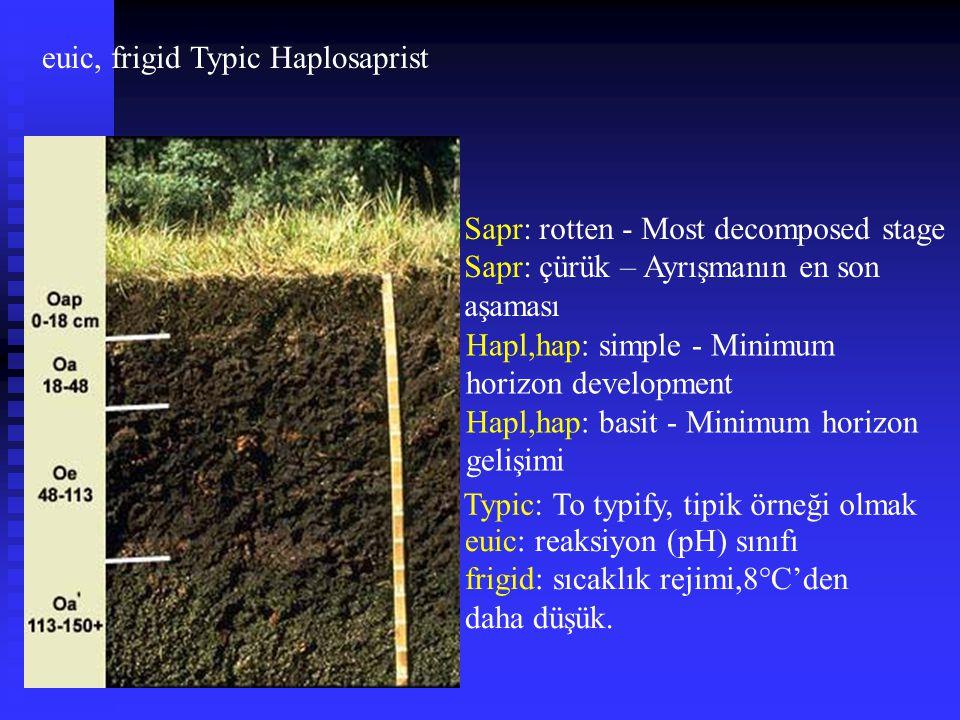 euic, frigid Typic Haplosaprist Hapl,hap: simple - Minimum horizon development Hapl,hap: basit - Minimum horizon gelişimi euic: reaksiyon (pH) sınıfı