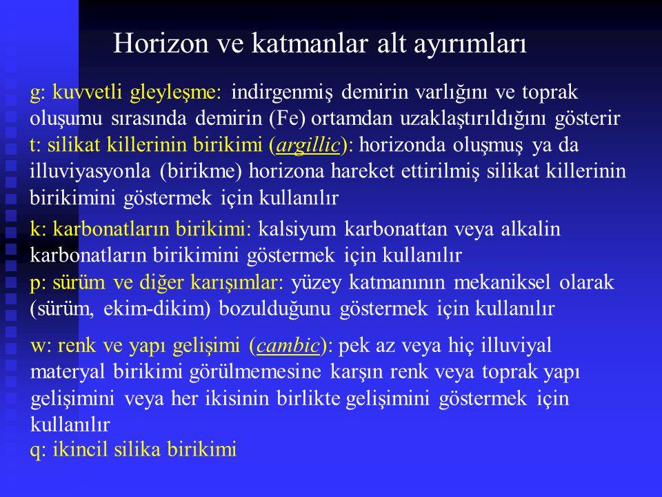 coarse-silty, mixed, superactive, frigid Calcic Haploxeroll Hapl,hap: simple - Minimum horizon development Hapl,hap: basit - Minimum horizon gelişimi Calcic: lime - Presence of a calcic horizon Calcic: kireç – Bir calcic horizonun varlığı coarse-silty (kaba siltli): tane büyüklük (bünye) sınıfı mixed (karışık): mineraloji sınıfı superactive (aşırı-etkin): katyon değişim kapasitesi (KDK) sınıfı frigid: sıcaklık rejimi Xeric: dry - Xeric moisture regime Xeric: kuru - Xeric nem rejimi