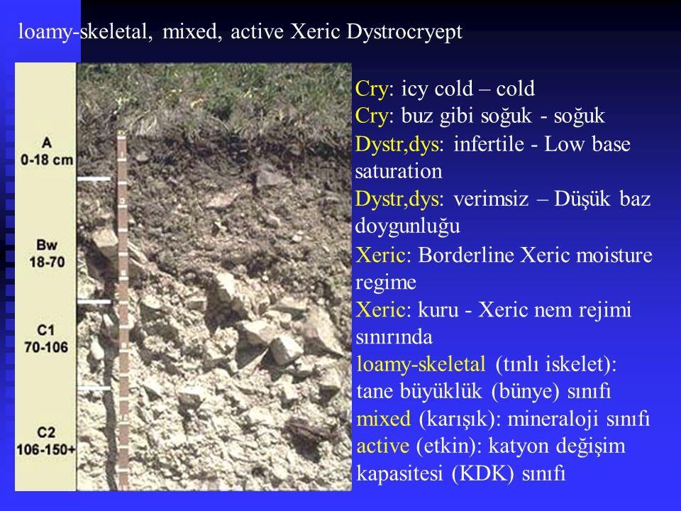 loamy-skeletal, mixed, active Xeric Dystrocryept Dystr,dys: infertile - Low base saturation Dystr,dys: verimsiz – Düşük baz doygunluğu Cry: icy cold –