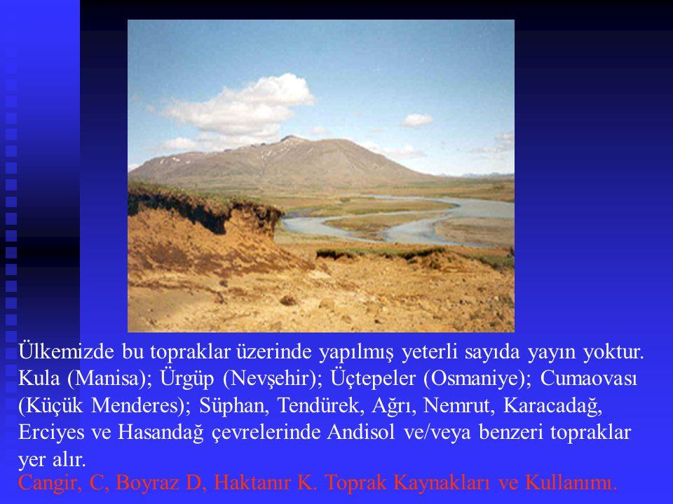 Ülkemizde bu topraklar üzerinde yapılmış yeterli sayıda yayın yoktur. Kula (Manisa); Ürgüp (Nevşehir); Üçtepeler (Osmaniye); Cumaovası (Küçük Menderes