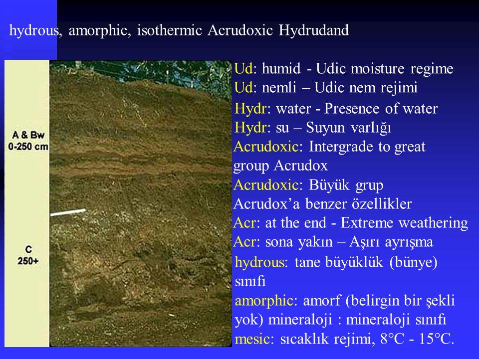 hydrous, amorphic, isothermic Acrudoxic Hydrudand Ud: humid - Udic moisture regime Ud: nemli – Udic nem rejimi Hydr: water - Presence of water Hydr: s