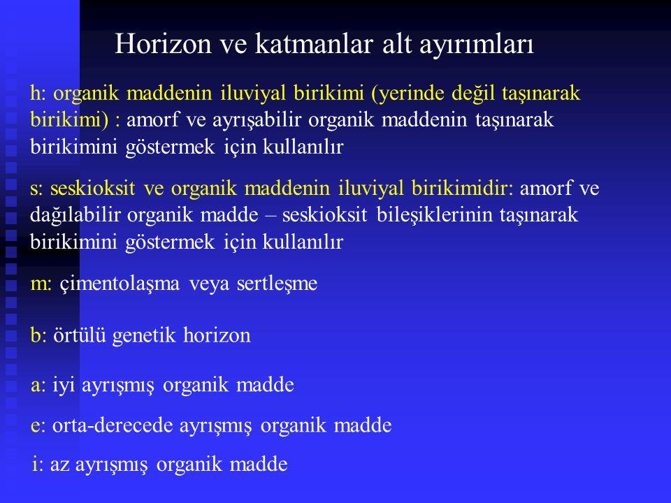 medial over loamy, amorphic over mixed, active Andic Haplocryod Andic: Intergrade to Andisols Andic: Andisols'e benzer özellikler Cry: icy cold – cold Cry: buz gibi soğuk - soğuk Hapl,hap: simple - Minimum horizon development Hapl,hap: basit - Minimum horizon gelişimi medial over loamy (tın üzerinde kaya parçaçıkları): tane büyüklük (bünye) sınıfı amorphic over mixed: karışık bir mineraloji üzerinde amorf (belirgin bir şekli yok)mineraloji : mineraloji sınıfı active (etkin): katyon değişim kapasitesi (KDK) sınıfı