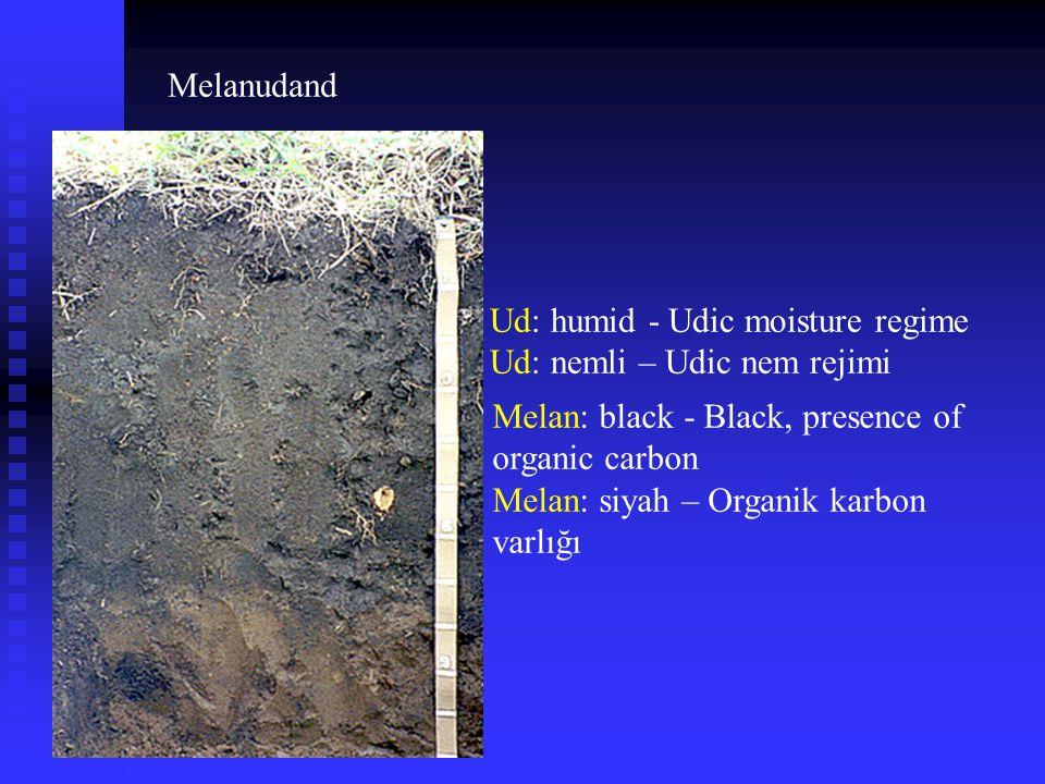 Melanudand Melan: black - Black, presence of organic carbon Melan: siyah – Organik karbon varlığı Ud: humid - Udic moisture regime Ud: nemli – Udic ne