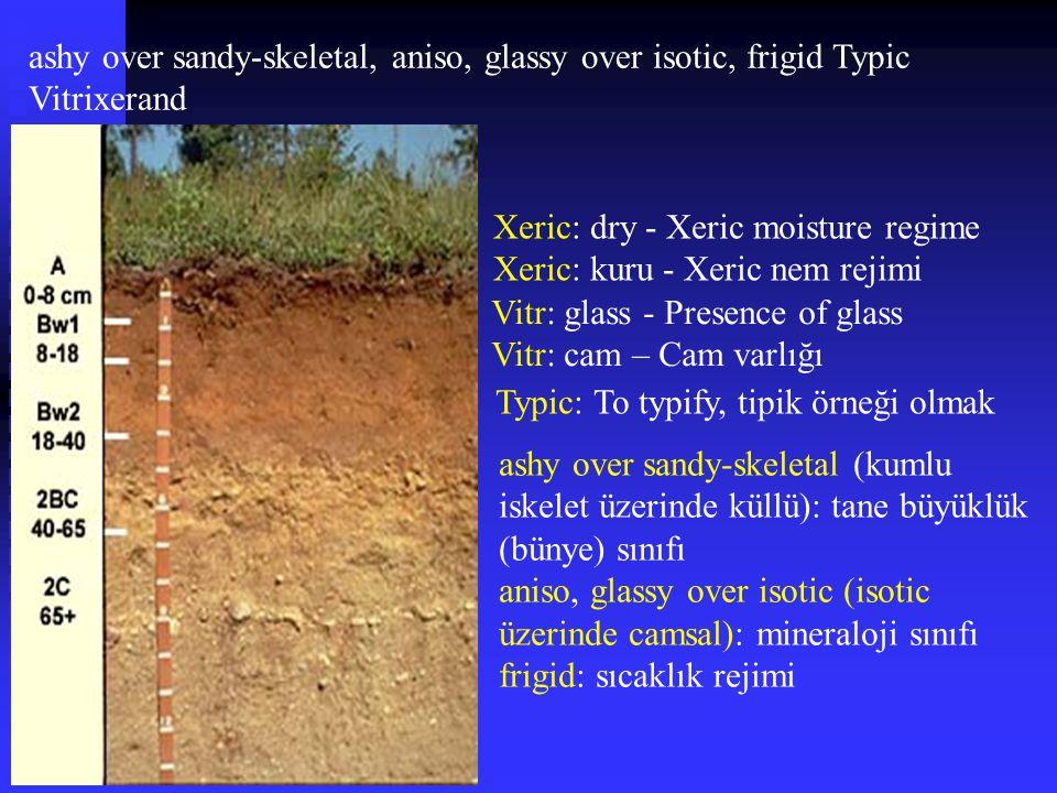 ashy over sandy-skeletal, aniso, glassy over isotic, frigid Typic Vitrixerand Vitr: glass - Presence of glass Vitr: cam – Cam varlığı Xeric: dry - Xer