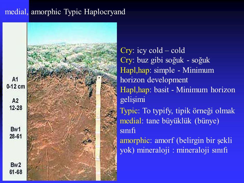 medial, amorphic Typic Haplocryand Cry: icy cold – cold Cry: buz gibi soğuk - soğuk Hapl,hap: simple - Minimum horizon development Hapl,hap: basit - M