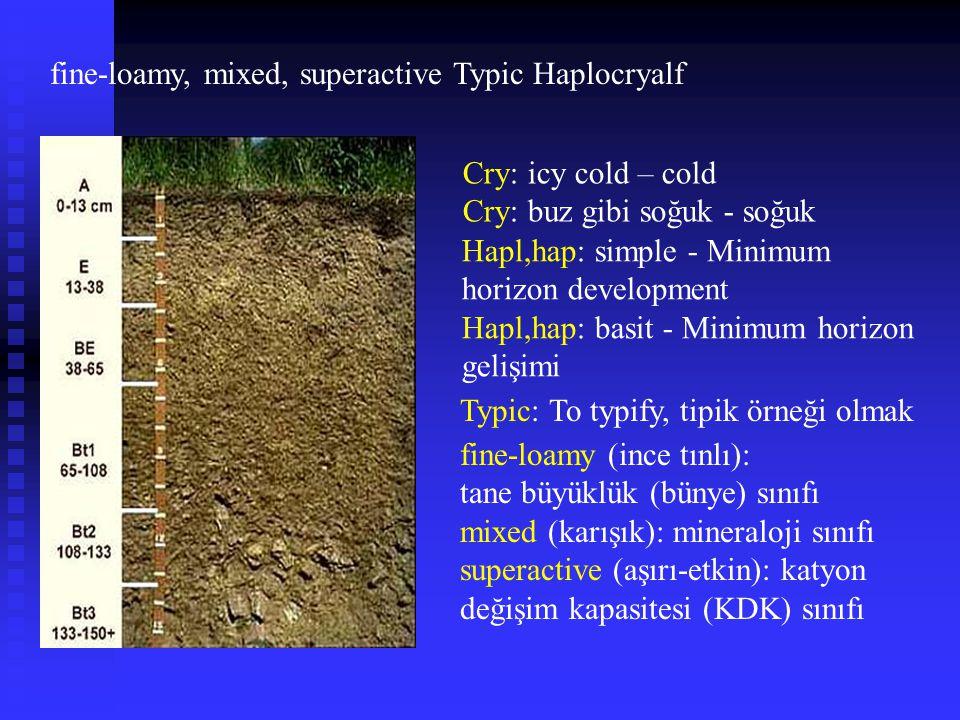 fine-loamy, mixed, superactive Typic Haplocryalf Cry: icy cold – cold Cry: buz gibi soğuk - soğuk Hapl,hap: simple - Minimum horizon development Hapl,