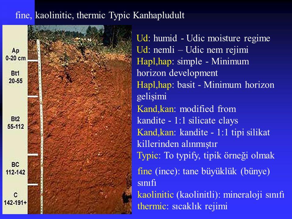 fine, kaolinitic, thermic Typic Kanhapludult Kand,kan: modified from kandite - 1:1 silicate clays Kand,kan: kandite - 1:1 tipi silikat killerinden alı