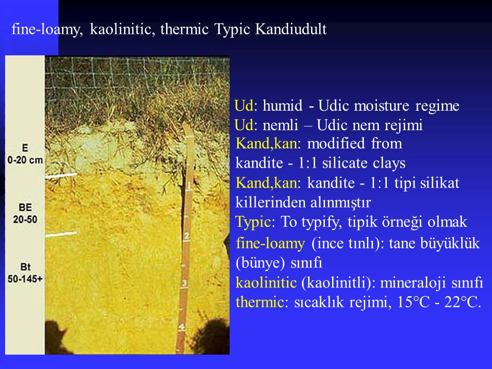 fine-loamy, kaolinitic, thermic Typic Kandiudult Kand,kan: modified from kandite - 1:1 silicate clays Kand,kan: kandite - 1:1 tipi silikat killerinden