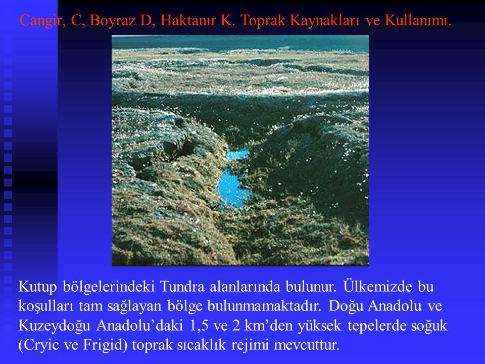 Kutup bölgelerindeki Tundra alanlarında bulunur. Ülkemizde bu koşulları tam sağlayan bölge bulunmamaktadır. Doğu Anadolu ve Kuzeydoğu Anadolu'daki 1,5