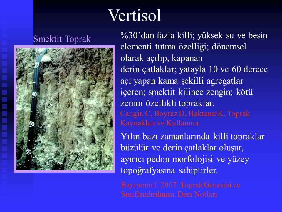 Çok koyu renkli bazlarca zengin topraklar Mollisol İklim: yarı ılıman yarı kurak bölgeler Bitki örtüsü: çayır Ülkemizde kıyı şeridi ve geçit bölgelerindeki ağır kil bünyeli olmayan, devamlı çayır veya orman bitki örtüsü altında bulunan pleyistosen ve holosen yaşlı erozyondan korunmuş yüzeylerde Mollisol'ler yaygın olarak yer almaktadır (Dinç vd., 1987) Dinç U, Kapur S, Özbek H, Şenol, S.
