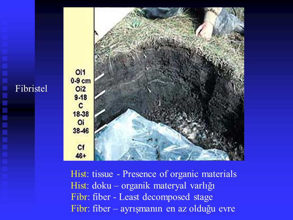 Fibristel Hist: tissue - Presence of organic materials Hist: doku – organik materyal varlığı Fibr: fiber - Least decomposed stage Fibr: fiber – ayrışm