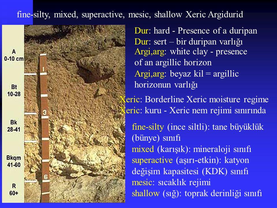 fine-silty, mixed, superactive, mesic, shallow Xeric Argidurid Dur: hard - Presence of a duripan Dur: sert – bir duripan varlığı Argi,arg: white clay