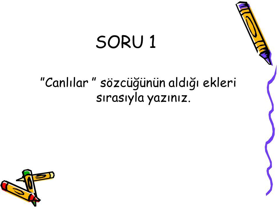 """SORU 1 """"Canlılar """" sözcüğünün aldığı ekleri sırasıyla yazınız."""