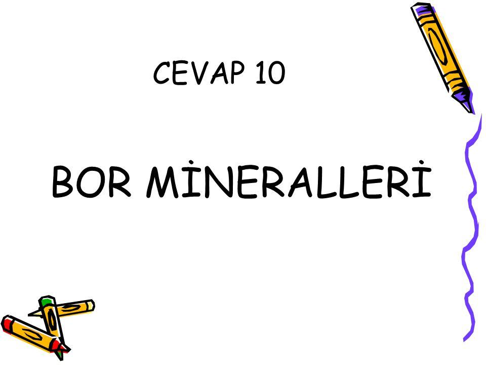 CEVAP 10 BOR MİNERALLERİ