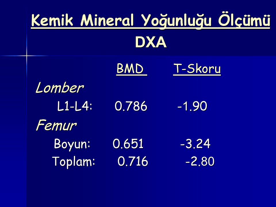 Kemik Mineral Yoğunluğu Ölçümü DXA BMD T-Skoru BMD T-SkoruLomber L1-L4: 0.786 - 1.90 L1-L4: 0.786 - 1.90Femur Boyun: 0.651 -3.24 Boyun: 0.651 -3.24 T