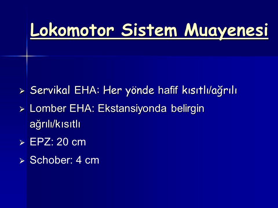 Lokomotor Sistem Muayenesi  Servikal EHA : Her yönde hafif kısıtlı / ağrılı  Lomber EHA: Ekstansiyonda belirgin ağrılı/kısıtlı   EPZ: 20 cm   Schober: 4 cm