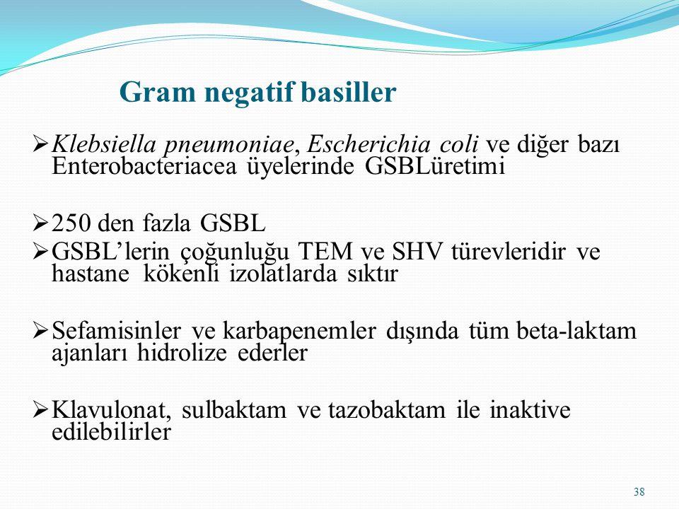 38 Gram negatif basiller  Klebsiella pneumoniae, Escherichia coli ve diğer bazı Enterobacteriacea üyelerinde GSBLüretimi  250 den fazla GSBL  GSBL'lerin çoğunluğu TEM ve SHV türevleridir ve hastane kökenli izolatlarda sıktır  Sefamisinler ve karbapenemler dışında tüm beta-laktam ajanları hidrolize ederler  Klavulonat, sulbaktam ve tazobaktam ile inaktive edilebilirler