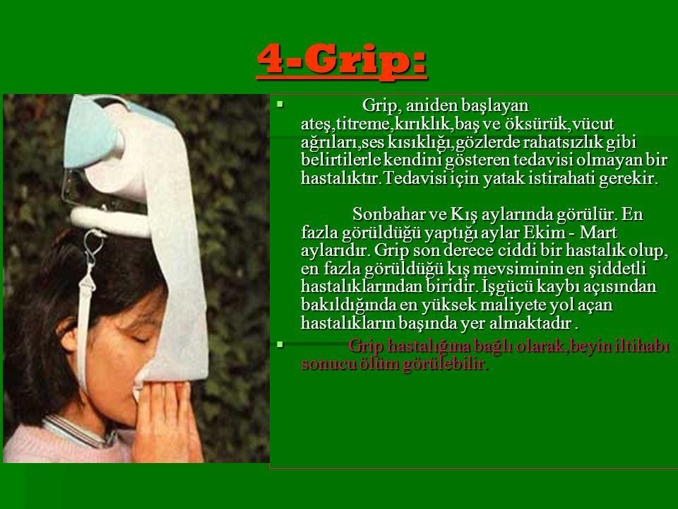 4-Grip:  Grip, aniden başlayan ateş,titreme,kırıklık,baş ve öksürük,vücut ağrıları,ses kısıklığı,gözlerde rahatsızlık gibi belirtilerle kendini göste