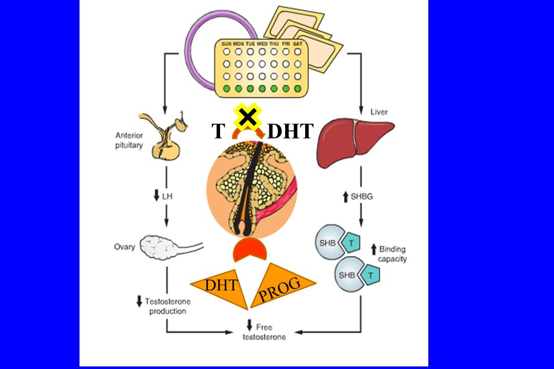 Sonuçlar İnsülin sensitizanlar: metformin, rosiglitazon * Çalışmalar yetersiz.
