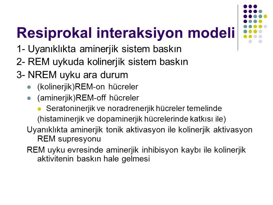 Resiprokal interaksiyon modeli 1- Uyanıklıkta aminerjik sistem baskın 2- REM uykuda kolinerjik sistem baskın 3- NREM uyku ara durum (kolinerjik)REM-on