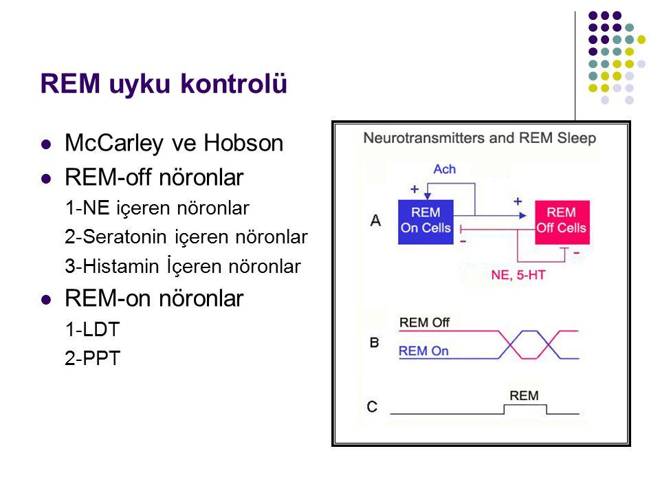 REM uyku kontrolü McCarley ve Hobson REM-off nöronlar 1-NE içeren nöronlar 2-Seratonin içeren nöronlar 3-Histamin İçeren nöronlar REM-on nöronlar 1-LD