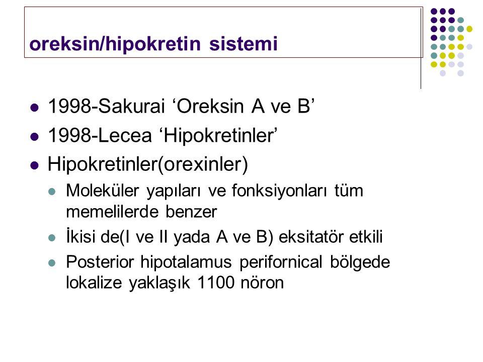 oreksin/hipokretin sistemi 1998-Sakurai 'Oreksin A ve B' 1998-Lecea 'Hipokretinler' Hipokretinler(orexinler) Moleküler yapıları ve fonksiyonları tüm m