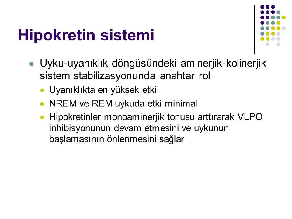 Hipokretin sistemi Uyku-uyanıklık döngüsündeki aminerjik-kolinerjik sistem stabilizasyonunda anahtar rol Uyanıklıkta en yüksek etki NREM ve REM uykuda