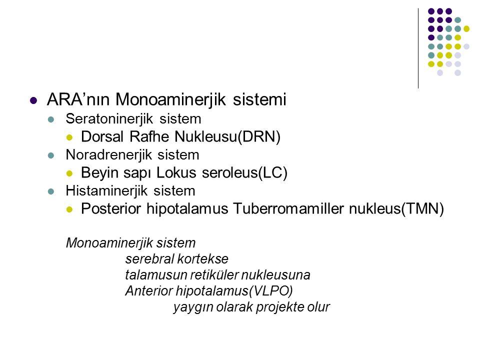 ARA'nın Monoaminerjik sistemi Seratoninerjik sistem Dorsal Rafhe Nukleusu(DRN) Noradrenerjik sistem Beyin sapı Lokus seroleus(LC) Histaminerjik sistem Posterior hipotalamus Tuberromamiller nukleus(TMN) Monoaminerjik sistem serebral kortekse talamusun retiküler nukleusuna Anterior hipotalamus(VLPO) yaygın olarak projekte olur