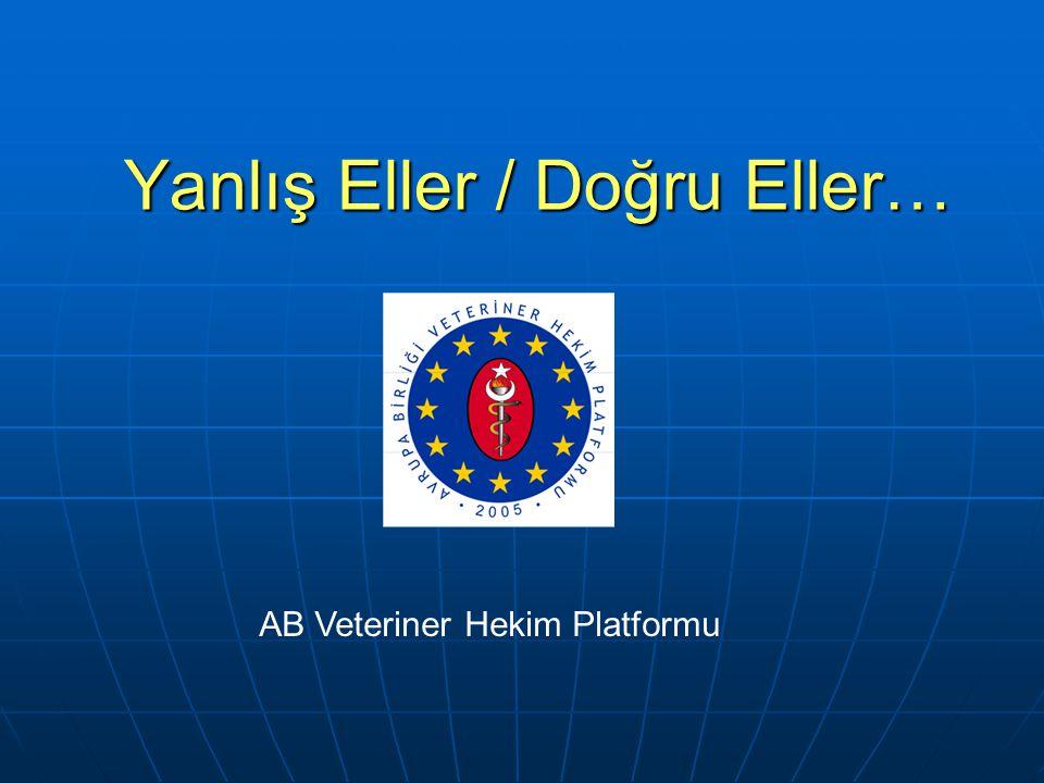 Yanlış Eller / Doğru Eller… AB Veteriner Hekim Platformu