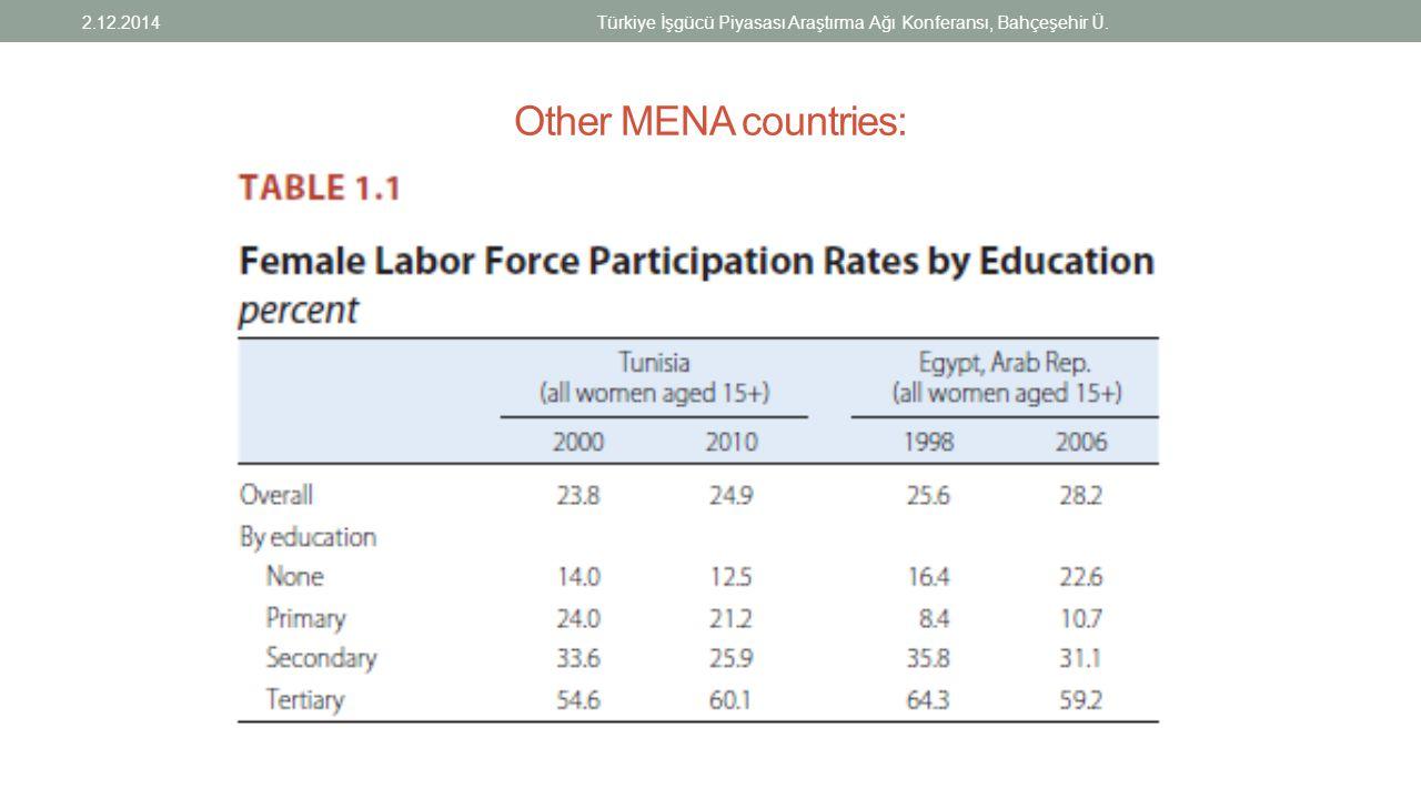 Other MENA countries: 2.12.2014Türkiye İşgücü Piyasası Araştırma Ağı Konferansı, Bahçeşehir Ü.