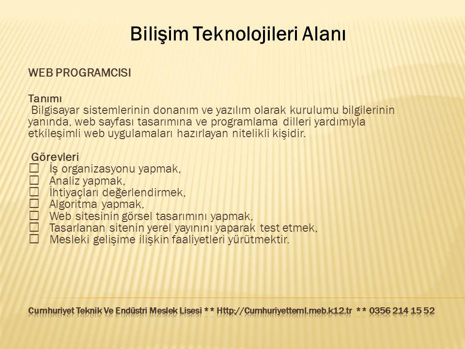 Bilişim Teknolojileri Alanı WEB PROGRAMCISI Tanımı Bilgisayar sistemlerinin donanım ve yazılım olarak kurulumu bilgilerinin yanında, web sayfası tasar