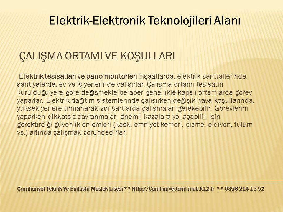 Elektrik-Elektronik Teknolojileri Alanı ÇALIŞMA ORTAMI VE KOŞULLARI Elektrik tesisatları ve pano montörleri inşaatlarda, elektrik santrallerinde, şant