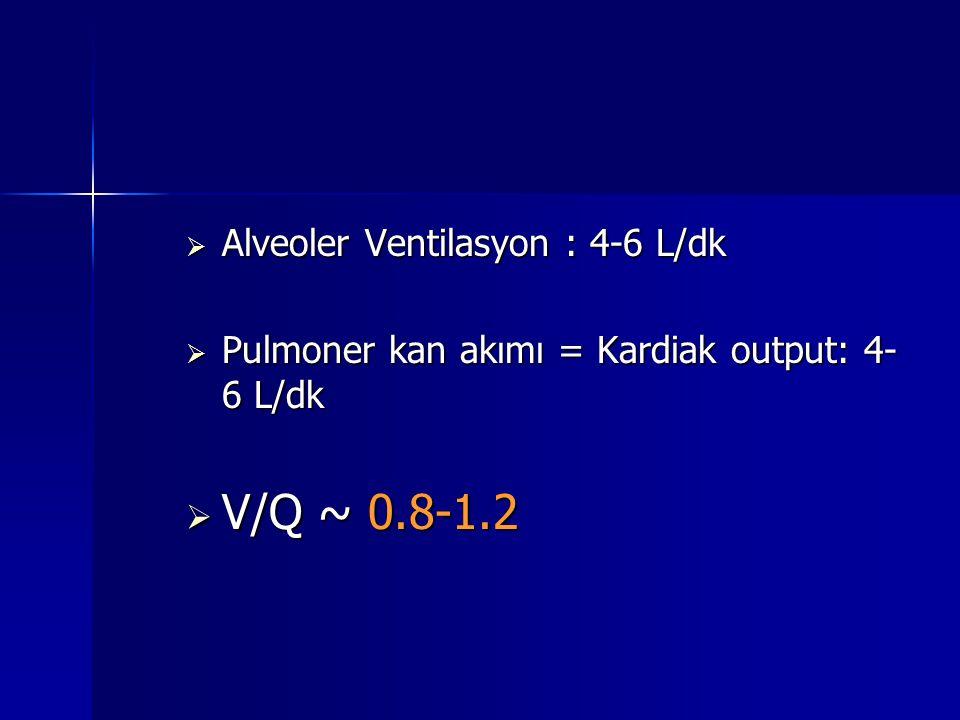 Alveoler Ventilasyon : 4-6 L/dk  Pulmoner kan akımı = Kardiak output: 4- 6 L/dk  V/Q ~ 0.8-1.2