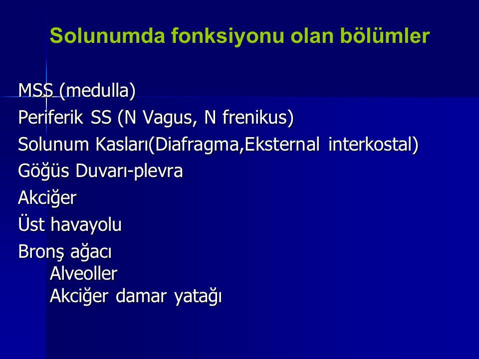 MSS (medulla) Periferik SS (N Vagus, N frenikus) Solunum Kasları(Diafragma,Eksternal interkostal) Göğüs Duvarı-plevra Akciğer Üst havayolu Bronş ağacı
