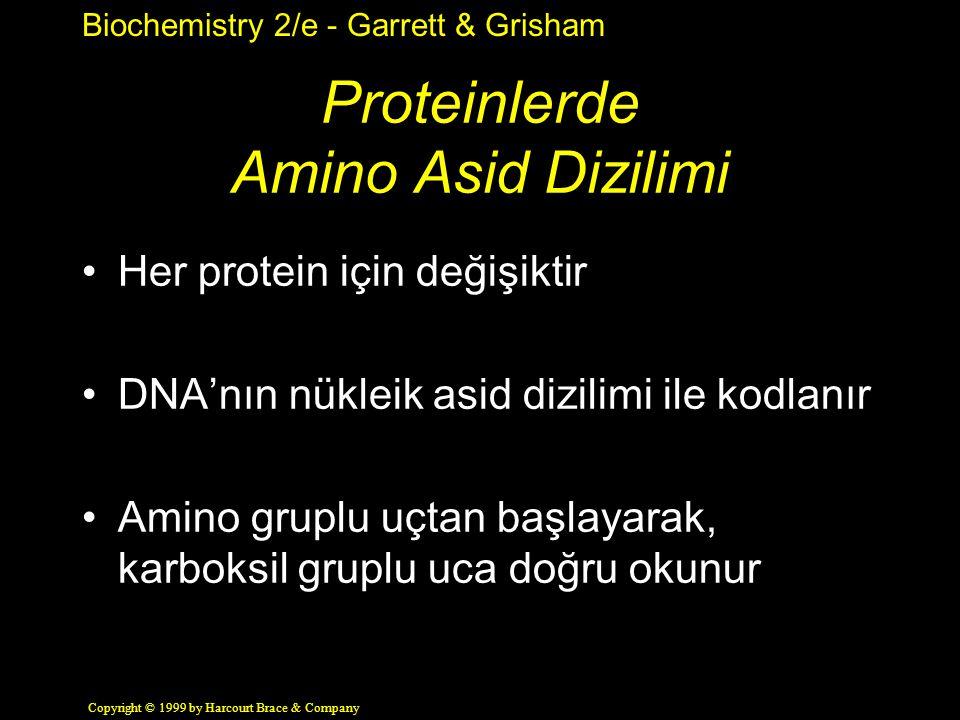 Biochemistry 2/e - Garrett & Grisham Copyright © 1999 by Harcourt Brace & Company Proteinlerde Amino Asid Dizilimi Her protein için değişiktir DNA'nın nükleik asid dizilimi ile kodlanır Amino gruplu uçtan başlayarak, karboksil gruplu uca doğru okunur