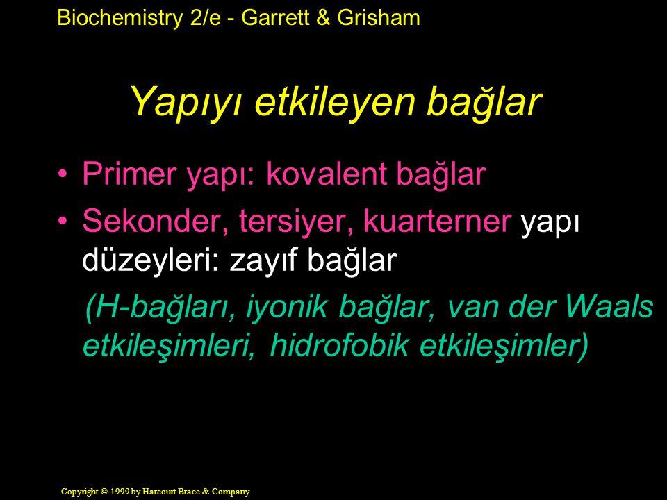 Biochemistry 2/e - Garrett & Grisham Copyright © 1999 by Harcourt Brace & Company Yapıyı etkileyen bağlar Primer yapı: kovalent bağlar Sekonder, tersiyer, kuarterner yapı düzeyleri: zayıf bağlar (H-bağları, iyonik bağlar, van der Waals etkileşimleri, hidrofobik etkileşimler)