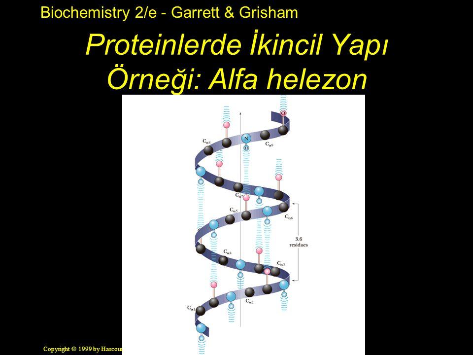 Biochemistry 2/e - Garrett & Grisham Copyright © 1999 by Harcourt Brace & Company Proteinlerde İkincil Yapı Örneği: Alfa helezon