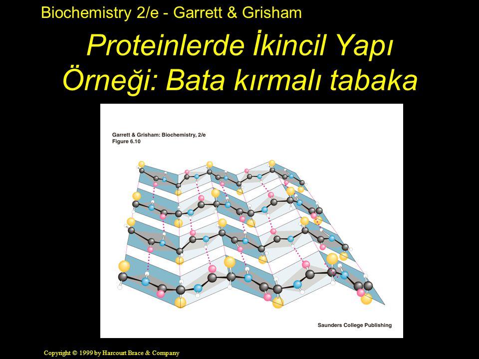 Biochemistry 2/e - Garrett & Grisham Copyright © 1999 by Harcourt Brace & Company Proteinlerde İkincil Yapı Örneği: Bata kırmalı tabaka