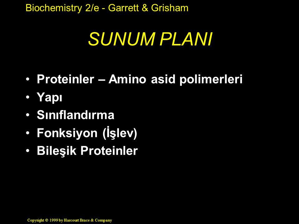 Biochemistry 2/e - Garrett & Grisham Copyright © 1999 by Harcourt Brace & Company SUNUM PLANI Proteinler – Amino asid polimerleri Yapı Sınıflandırma Fonksiyon (İşlev) Bileşik Proteinler