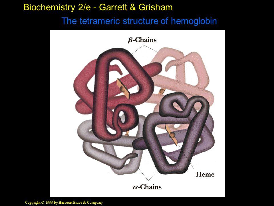 Biochemistry 2/e - Garrett & Grisham Copyright © 1999 by Harcourt Brace & Company The tetrameric structure of hemoglobin